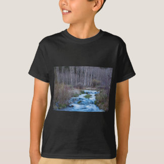Spring Melt Off Flowing Down From Bonanza T-Shirt
