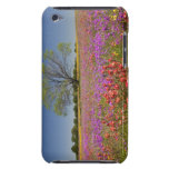 Spring mesquite trees growing in wildflowers Case-Mate iPod touch case