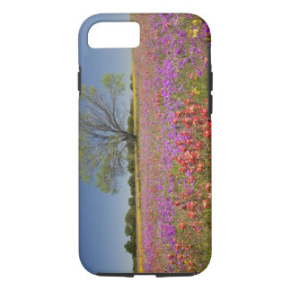 Spring mesquite trees growing in wildflowers, iPhone 7 case