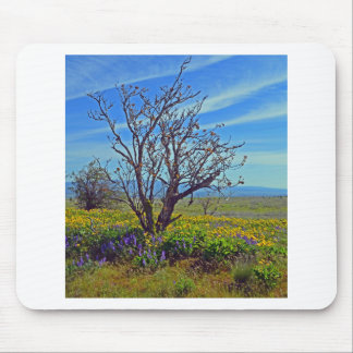 Spring On High Prairie Mouse Pad
