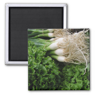 Spring onions and lettuce magnet