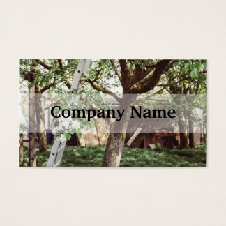 Spring Orchard With Ladder Against Tree Business Card
