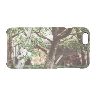 Spring Orchard With Ladder Against Tree Clear iPhone 6/6S Case