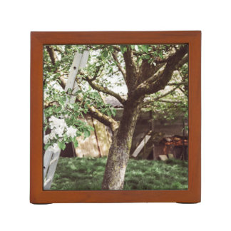 Spring Orchard With Ladder Against Tree Desk Organizer