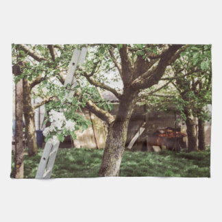 Spring Orchard With Ladder Against Tree Kitchen Towel