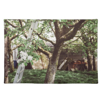 Spring Orchard With Ladder Against Tree Placemat