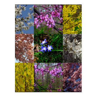 Spring Patchwork Postcard