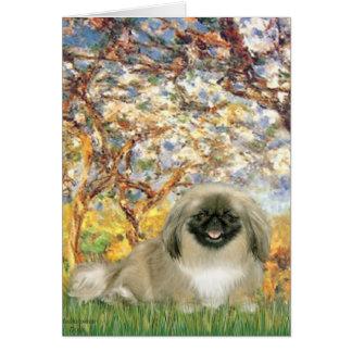 Spring - Pekingese 1b Card