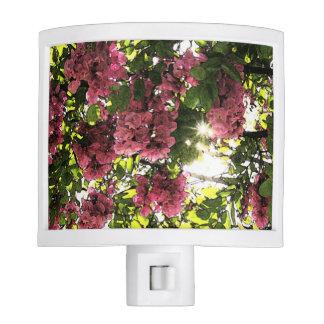 Spring Pink Night Light
