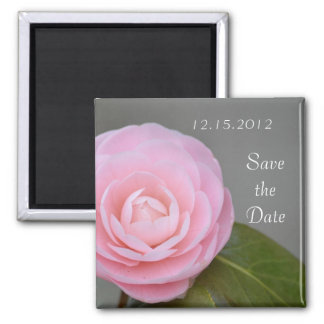 Spring Pink Rose Save the Date Square Magnet
