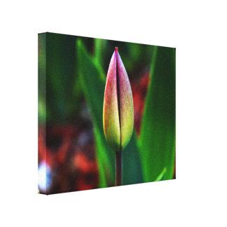Spring Pride Canvas Gallery Wrapped Canvas