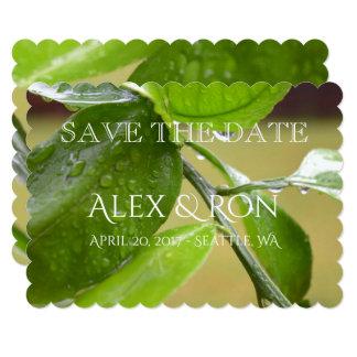 Spring rain green invitations