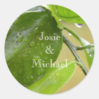 Spring rain green sticker