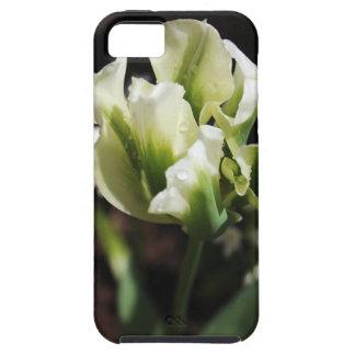 Spring Showers Tulip Garden Botanical Photography iPhone 5 Case