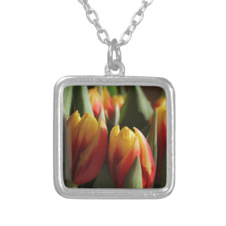 spring silver plated necklace