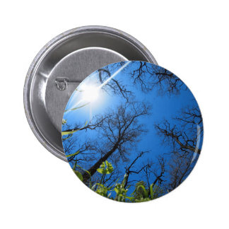 Spring sky - view from below 2 inch round button