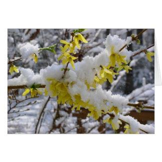 Spring Snow Notecard