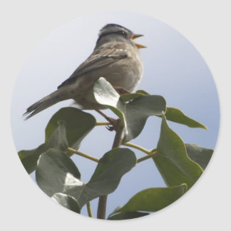 SPRING SONG BIRD Collection Classic Round Sticker