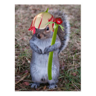 Spring Squirrel with Flower Pedal Hat Postcard