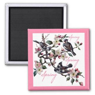 Spring Time Apple Blossom Birds Square Magnet