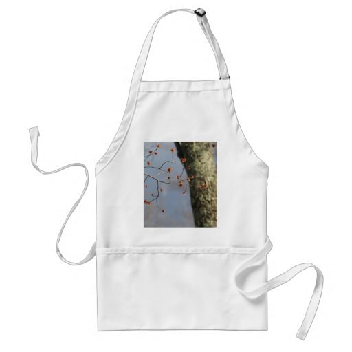 Spring Time Bloom Aprons