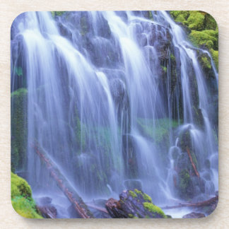 Spring-time fresh water flowing over moss coasters