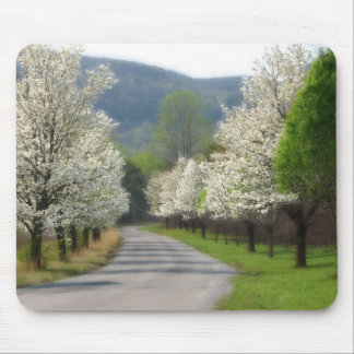 Spring time in the country mouse pad