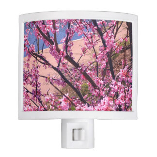 Spring time night light