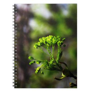 Spring Tree Buds Notebook
