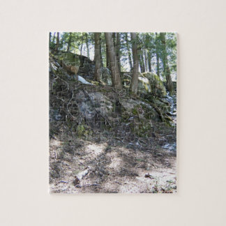 Spring Tree Roots on a Rocky Slope Puzzles