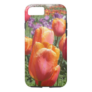 Spring Tulips iPhone 7 case
