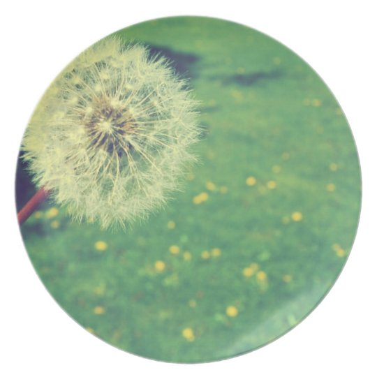 Spring Vintage Wishes Photography Plate