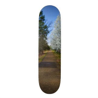 Spring Walk Custom Skate Board