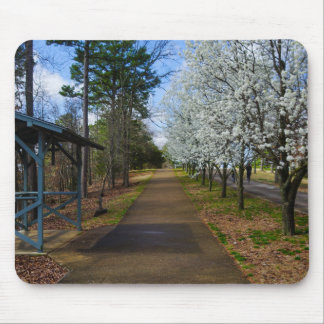 Spring Walk Mouse Pad