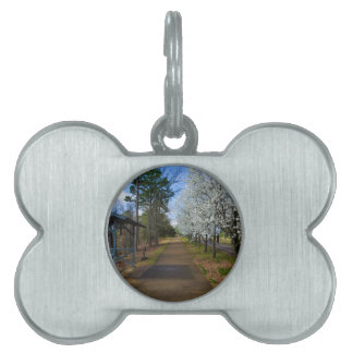 Spring Walk Pet Name Tag
