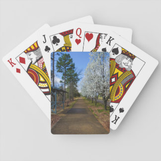 Spring Walk Poker Deck