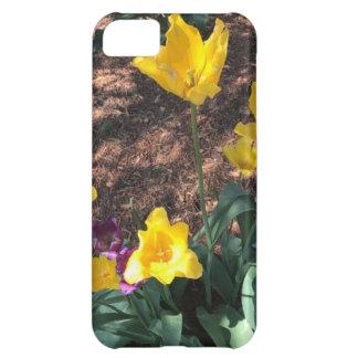 Spring yellow tulip type flowers iPhone 5C case