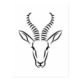 Springbok head postcard