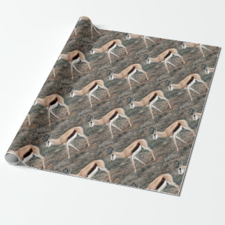 Springbok Wrapping Paper