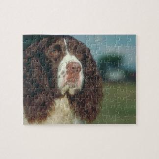Springer Spaniel Dog Puzzle