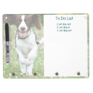 Springer Spaniel Dry Erase (featuring Ringo!) Dry Erase Board With Keychain Holder