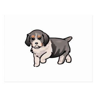 Springer Spaniel Puppy Postcard