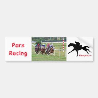 Springer's Point- Frankie Pennington Bumper Sticker