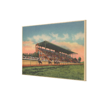 Springfield, IL - State Fair Grounds Horse Stretched Canvas Print