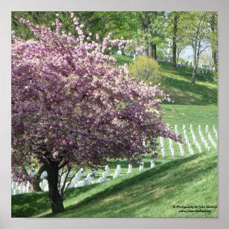 Springtime Again in Arlington National Cemetery Poster