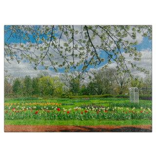 Springtime at Elizabeth Park Boards