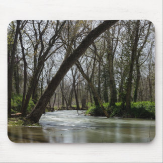 Springtime At Finley Mouse Pad