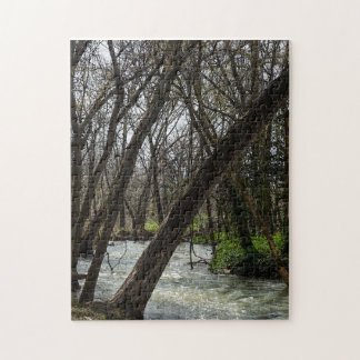 Springtime At Finley River Jigsaw Puzzle