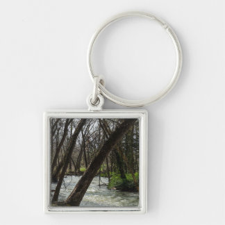 Springtime At Finley River Keychain