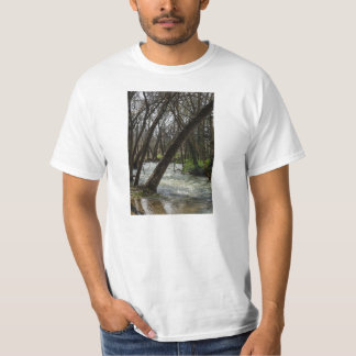 Springtime At Finley River T-Shirt
